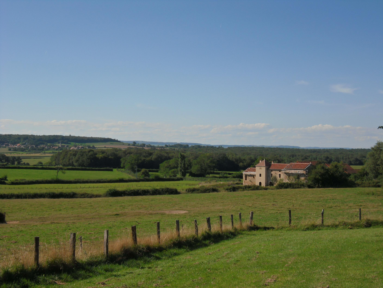 Salah satu pemandangan di halaman belakang rumah liburan di Perancis Selatan, kita pindah-pindah ke tiga kota